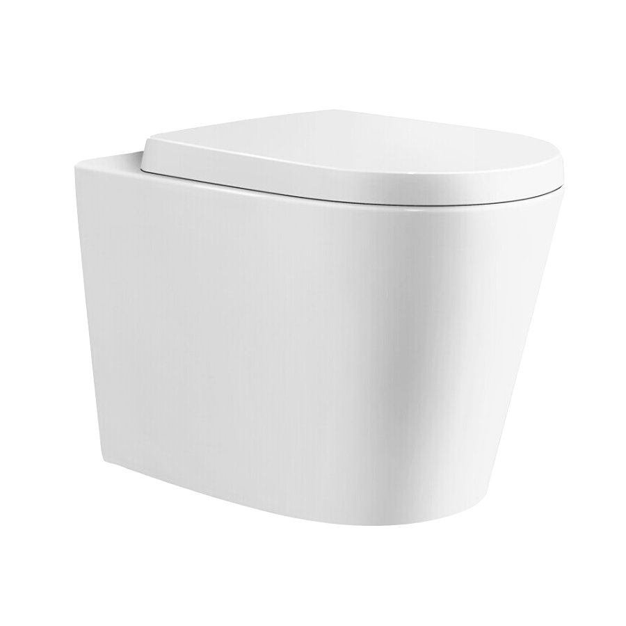 White back to wall ceramic pan with hard plastic seat